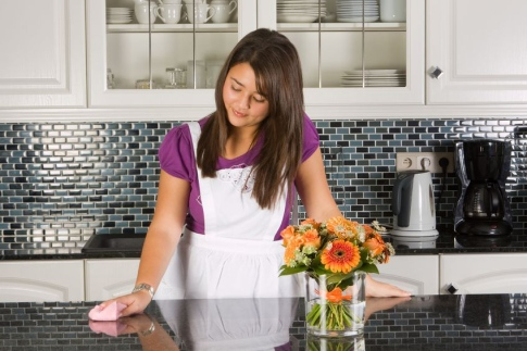 Palm Beach Housekeepers Housekeeping Cleaners Maids